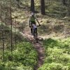 dt4you-mtb-2018-img_9367