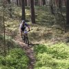 dt4you-mtb-2018-img_9378