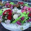 eo_p1480839