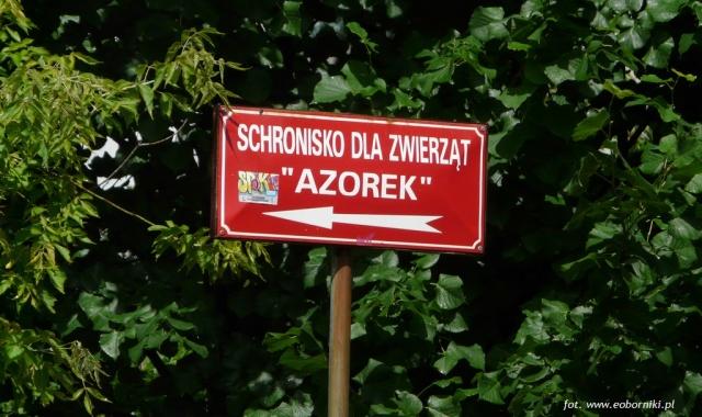 Wszyscy są przeciw Azorkowi
