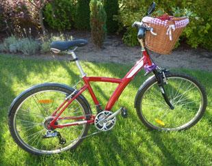 Pilnuj roweru