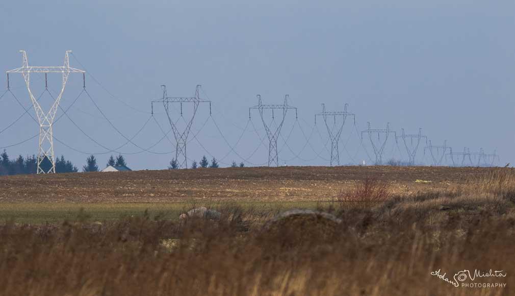 Rokietnica. Linia elektroenergetyczna 400 kV Piła Krzewina – Plewiska