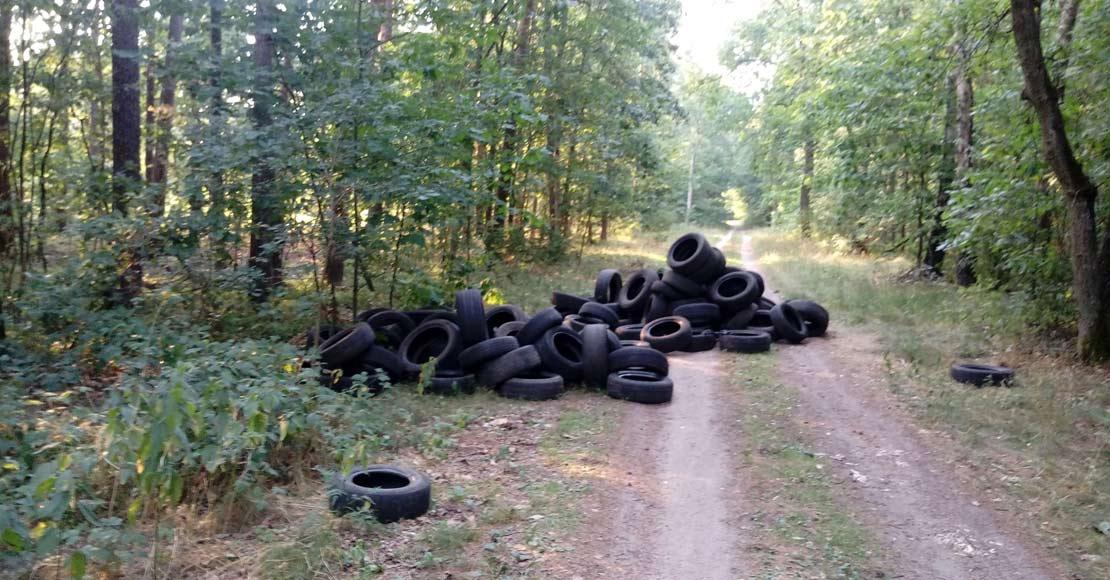 Około 70 opon wywieziono do lasu