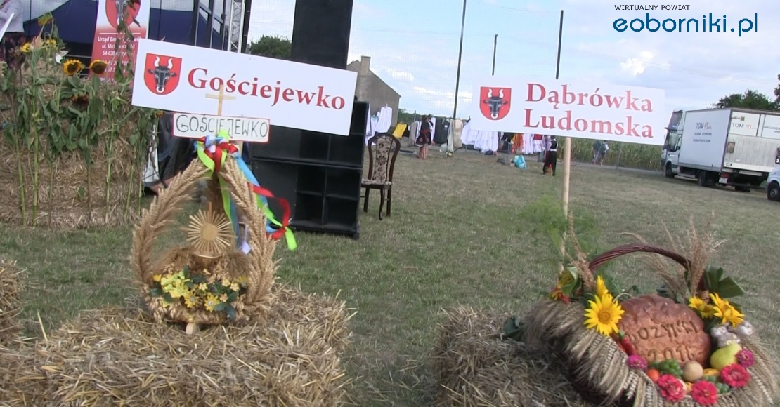 Dożynki gminne w Gorzewie (film)