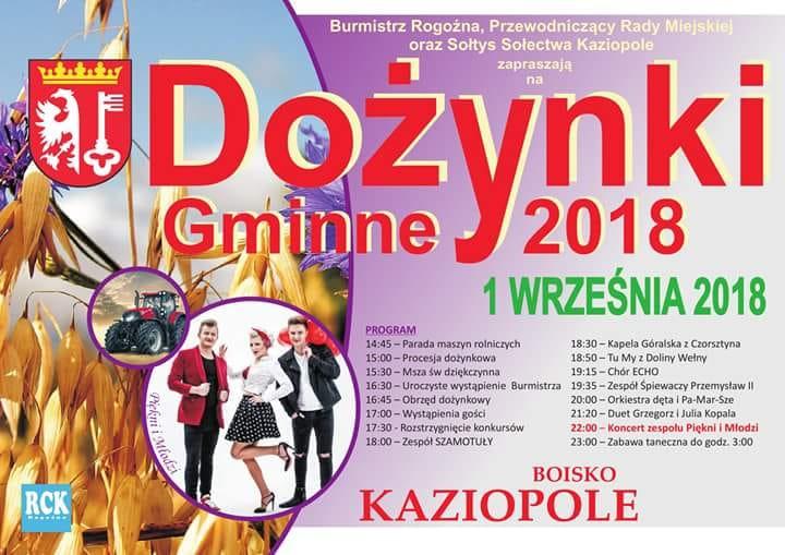 Czas na dożynki w gminie Rogoźno (film)