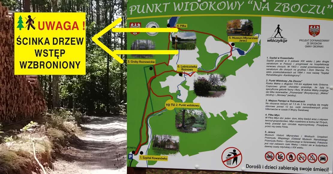 Uwaga! Przy ścieżce Nordic Walking prowadzone są prace leśne