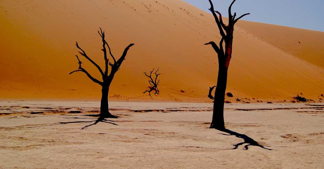Namibia- niezwykłe krajobrazy, fauna i flora.