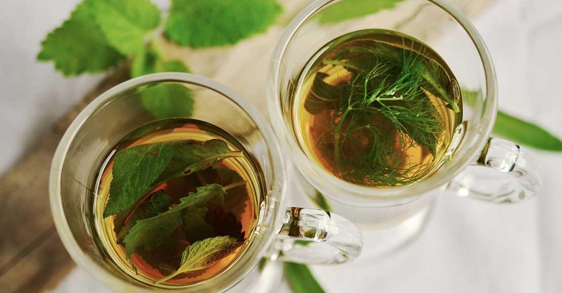 Wybieraj produkty najlepsze dla Twojego organizmu, czyli dlaczego warto zamienić herbatę zwykłą na w pełni ekologiczną