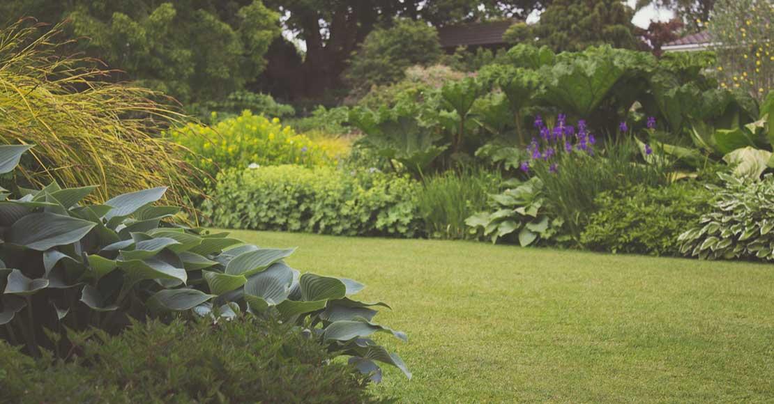 Jak zaprojektować mały ogród?