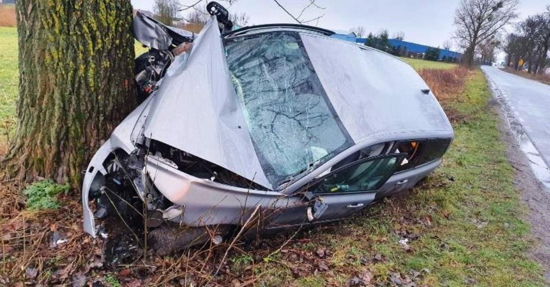 Nietrzeźwy kierowca uderzył w drzewo.