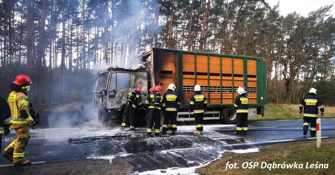 Pożar samochodu ciężarowego na drodze wojewódzkiej