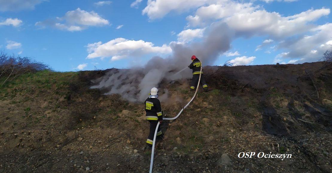 Palił się nasyp kolejowy w Bogdanowie
