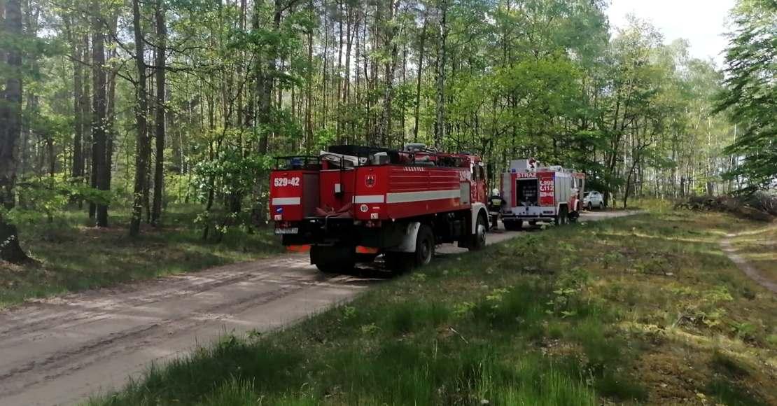 Pożar ściółki w Ludomkach (foto)