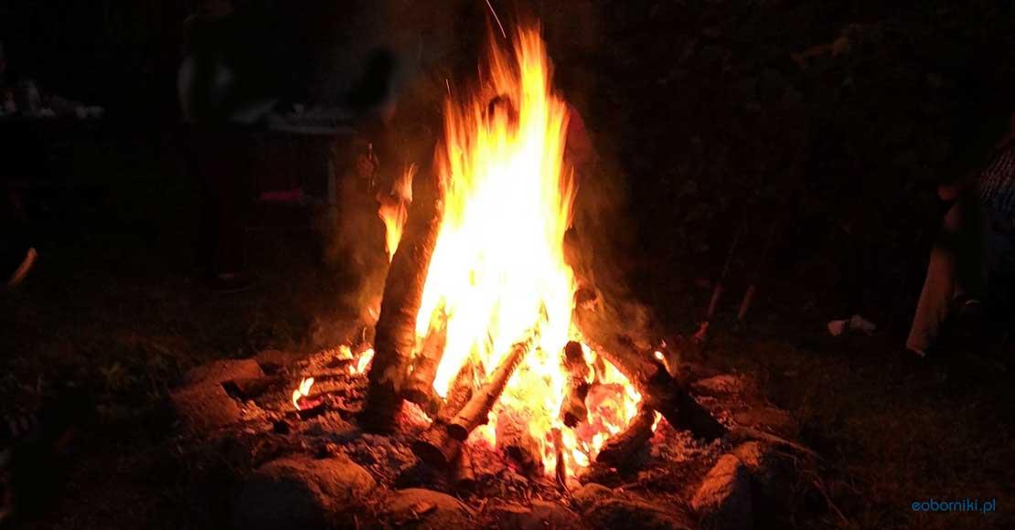 Czy można palić liście, ognisko na swojej działce, w ogrodzie?