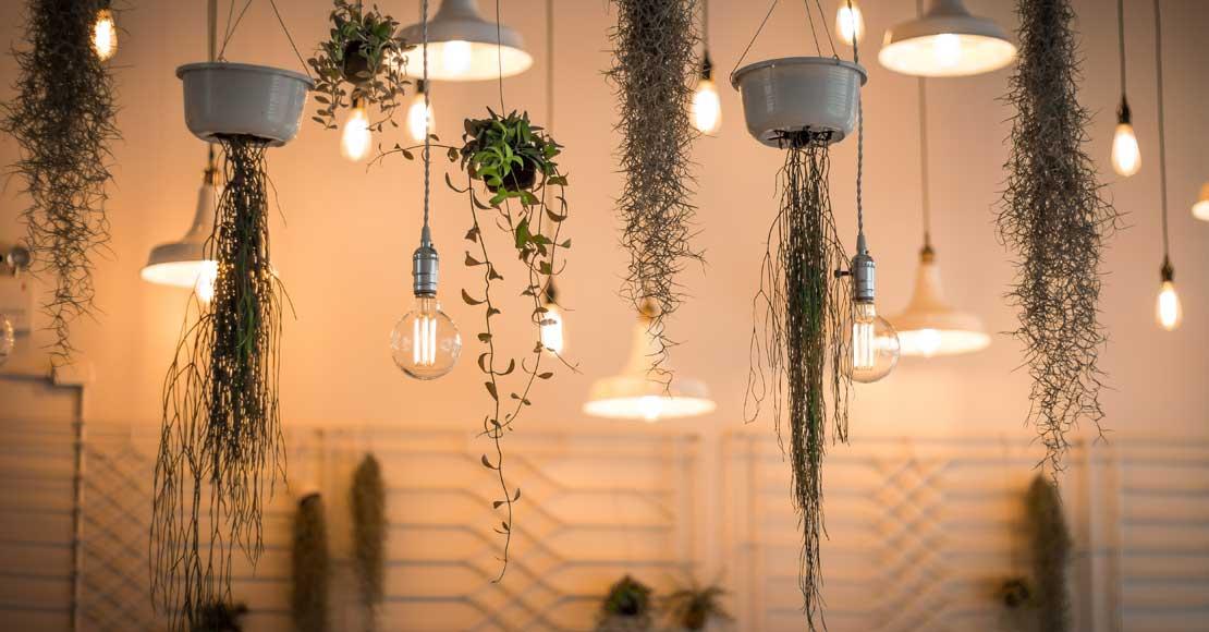 Jak odpowiedni wybór lamp może ozdobić wnętrze Twojego domu?