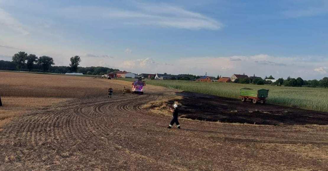 Pożar pola w Tłukawach (foto)