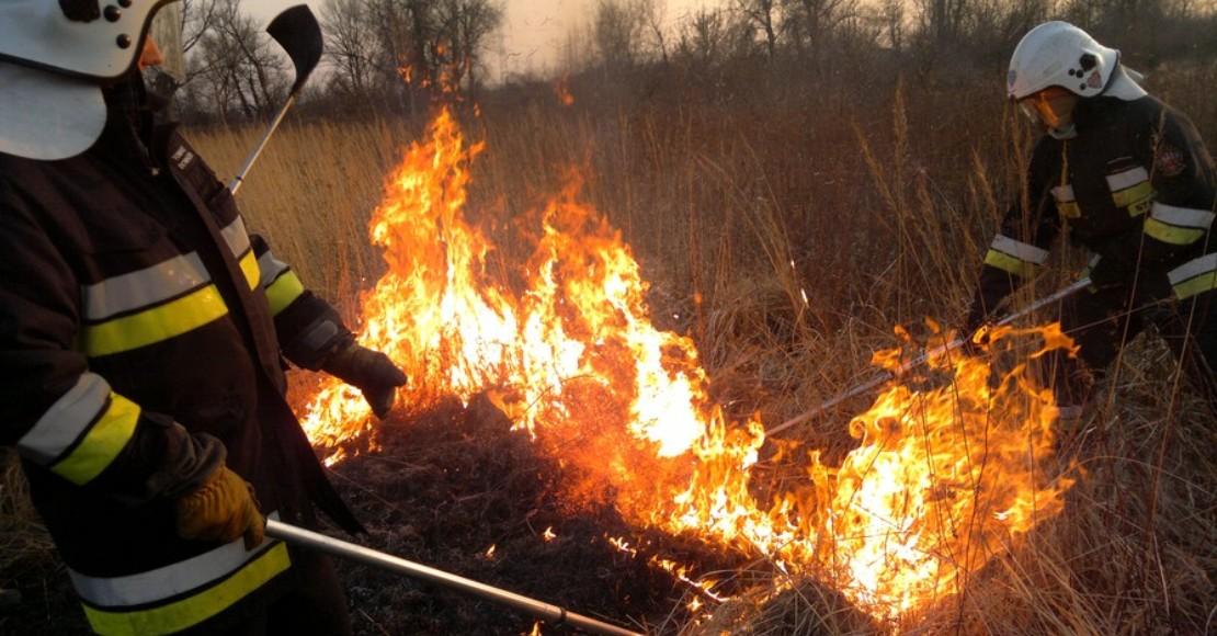 Wypalanie traw jest szkodliwe i karalne