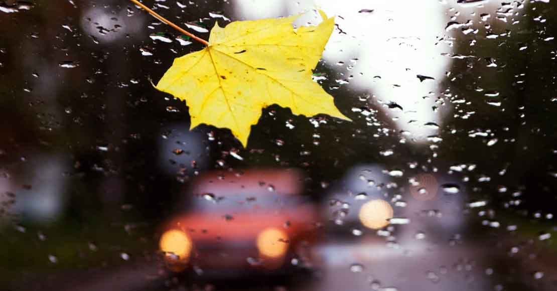 Pomoc drogowa podpowiada: przygotuj swoje auto, zanim nadejdzie jesień!