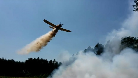 Pożar lasu niedaleko Sławienka (film)