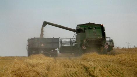Susza przyczyną problemów rolników